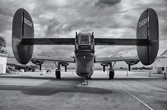 B-24 Liberator (Burnt Umber) Tags: wingsoffreedom b24 liberator twin boom rotary supercharger trainer army air corp america american usa united states ww2 world war 2 machine gun relic rpilla001 pentax k5 digitalisthedevil pentax77mm ©allrightsreserved