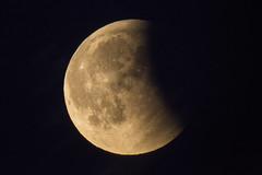 blood moon eclipse (eb78) Tags: ca california eastbay superbluebloodmoon lunareclipse albany bloodmoon bluemoon supermoon fullmoon