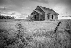 (Rodney Harvey) Tags: abandoned schoolhouse nebraska rural decay infrared bw fence post wire ivy grass