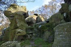 Brimham Rocks (137) (rs1979) Tags: brimhamrocks summerbridge nidderdale northyorkshire yorkshire loversleap