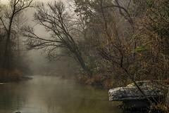 Dew Drops (keith_shuley) Tags: stream creek bullcreek dew fog