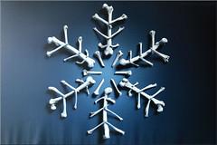 a snowflake? ... (Bernergieu) Tags: snowflake detail blue bones art inexplore theflickrlounge weeklytheme