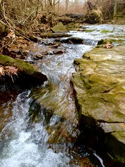 Creek (burton.amanda13) Tags: nature rocks water waterscape cree