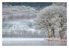 Loch Ard (NorthernXposure) Tags: landscape lochard winter thetrossachs scotland