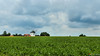 Moravian silence (Szymon Simon Karkowski) Tags: outdoor silence windmill building landscape clouds sky corn field tree trees moravia czech republic canon eos 1200d