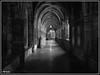 Liège_Cathédrale St Paul 54b (Jean Marie Bailly) Tags: belgique liège provincedeliège wallonie noirblanc cathédralestpaul