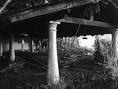 Vestigios de La Hacienda El Encantado (@williamsmolin52) Tags: photographienoir photographynoir noir pasado past blackandwhite blancoynegro desatured desaturado shadow sombras williamsmolin52 encantado haciendaelencantado venezuela caracas vestigios ruinas