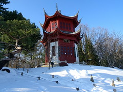 Chinese Garden at Montreal Botanical Garden (chibeba) Tags: montreal canada quebec qc northamerica winter 2018 january vacation holiday winterbreak city citybreak urban garden gardens snow montrealbotanicalgarden botanic botanical montrealbotanic chinese chinesegarden bluesky
