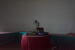 Hotel, India (Richard:Fraser) Tags: kerala india hotel plant pepsi red blue shadow indoor wall