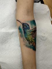 Hummingbird #bird #hummingbirdtattoo #wildlifetattoo #tattoo #tattoos #birdtattoo #colortattoo #animaltattoo #tatoos #tatts (brianmathewtattoos) Tags: colortattoo animaltattoo tattoo tatoos birdtattoo tatts bird tattoos hummingbirdtattoo wildlifetattoo
