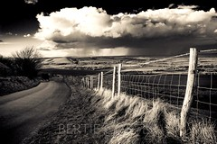 A storm is coming, Firle beacon, Sussex (bertie.carter.photography) Tags: storm firle beacon sussex monochrome landscape clouds drama