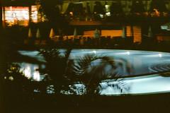 (ニノ Nino) Tags: fuji fujifilm fujicolor color superia 100 expired olympus mju ii iii 28mm swimming pool pools palm trees palms 35mm 35 mm film analog analogue