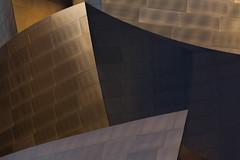 Disney Hall 03 (RyanLunaPhotography) Tags:
