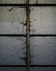 20180114_365_KDW014 (KrisWould) Tags: 2018 365 365project 50mm art artseries british d750 daily distressed everyday gb greatbritain grunge kriswood london niftyfifty nikon photo photoaday photoeveryday project sigma stratford uk unitedkingdom wall year gbr