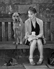 animals (GSFC Photo Club) Tags: dog street
