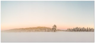 Winter panorama from Norway 180 x 80