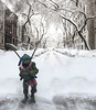 leo in the snow (CR1965) Tags: tmnt neca 14 newyork snow winter teenagemutantninjaturtles eastmanandlaird eastmanlaird toycollecting toys collectortoys moviecollectable jimhenson leonardo nickolodeon