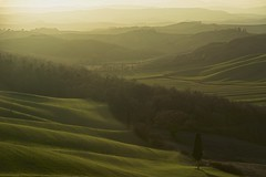 Waiting for sunset (Antonio Cinotti ) Tags: landscape paesaggio toscana tuscany italy italia siena hills colline campagnatoscana cretesenesi asciano nikond7100 nikon d7100 rollinghills nikon1685 cypress sanmartinoingrania sunset