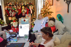Christmas2016-0134 (awinner) Tags: 2016 christmas christmas2016 december2016 december25th2016 figment holidays jackiewinner largoflorida