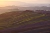 Fog layers on top of velvet layers (cigno5!) Tags: green velvet hills smooth soft cypress road path fog goldenhour mist farmstead bend waves slopes darktable toscana italy siena layers cretesenesi