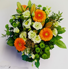 (#3.396) Blumen / bouquet of flowers (unicorn 81) Tags: 18200mm geburtstag geburtstagsblumen birthday bouquet flowers blumen straus pflanze blume bouquetofflowers plant blossoms colorful colorfully beautiful surprise congratulations birthdaypresent fleurs blumenstraus blumenstrauss bunchofflowers