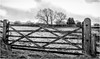 Teesdale . (wayman2011) Tags: f2 fujifilmxf23mm lightroomfujifilmxt10 wayman2011 bwlandscapes mono rural countryside gates pennines dales teesdale mickleton countydurham uk