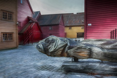 Hug me.... (Siggi007) Tags: fish outdoors bergen bryggen carvings sculpture wooden buildings ling colors artistic listed unesco canvas roof exhibition display culture norway norwegen noruega canon winter tourism old houses farben history colores colour