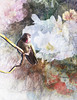 Oh, Hummingbird (Cheryl Razmus) Tags: topazimpressions awake photoshop digitalmanipulation digitalart spring flowers hummingbirds
