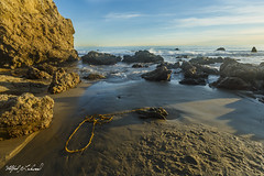 Lasso_MG_0399 (Alfred J. Lockwood Photography) Tags: alfredjlockwood nature landscape seascape seastack rock sand elmatadorstatebeach seaweed pacificocean pacificcoast southerncalifornia malibu winter goldenhour clouds