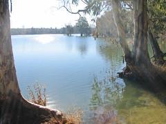 Luces de la mañana (Micheo) Tags: embalsedelcubillas pantanodecubillas luces light agua andalucia water manglares ngc