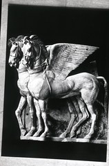 Etruscan winged horses of Tarquinia (foundin_a_attic) Tags: etruscan winged horses tarquinia