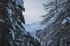 (AleAinaz) Tags: incendio valle di susa torino boschi rocciamelone montagna alberi case truc