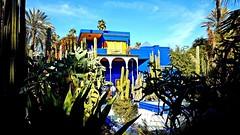 Jardin Majorelle, Marrakech, Morocco (MatteoLucaGalli) Tags: marrakech morocco jardinmajorelle garden sky travel traveling