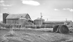 Memories of Days Gone By.. (John Neziol) Tags: jrneziolphotography portrait landscape farmlandscape outdoor old haybales hay farm farmequiptment barn silo grass sky monochrome nikon nikoncamera nikondslr nikond80 naturallight