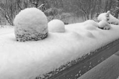 Mounds (brucetopher) Tags: snow snowfall accumulation witner white cold frozen snowflake snowflakes snowstorm storm weather season seasonal black blackandwhite bw blackwhite monochrome mono