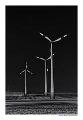 proud in the wind (Der Zeit die Augenblicke stehlen) Tags: windkraft thomas hesse hth56 monochrom bw sw low key