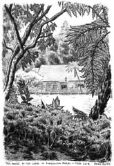 2018-02 Pukekura Tea House (gnyp) Tags: gnyp sketch drawing new plymouth zealand taranaki pukekura park tea house