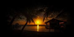 Roatan Sunset  2018 (qualistat) Tags: sunset roatan ocean water sea caribbean palmtrees beach sand holiday clouds honduras