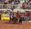 WacoRodeoDec2017 47 (cdw21) Tags: cowboy rodeo roping calf horse sport waco texas