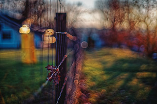#168 - The fence / Plotovka