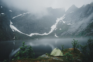 The foggy tranquility