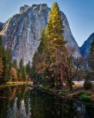 Yosemite Scene