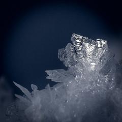 Cristaux de glace (watbled05) Tags: macro neige glace cristaux bokeh