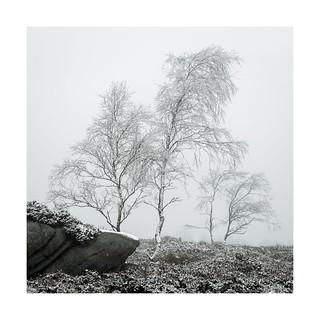 Bolehill snow 19