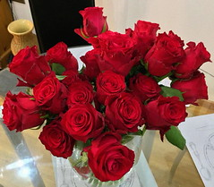 St Valentines Day Roses (Roy Richard Llowarch) Tags: stvalentine stvalentines stvalentinesday saintvalentine saintvalentines saintvalentinesday rose roses rosebowl rosepetals petal petals cupid love eros flower flowers redrose redroses red royllowarch royrichardllowarch llowarch 2018
