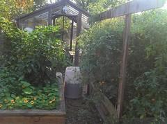 2011-10-23_16-33-04_850