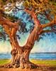 Oak, Neptune Park, St. Simons Island Georgia (PhotosToArtByMike) Tags: stsimonsisland digitalpainting neptunepark oak tree trees townpark goldenisles georgia ga downtown brunswick historicdistrict