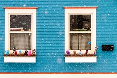 Two Windows (Karen_Chappell) Tags: window two blue 2 snow snowy snowing house jellybeanrow stjohns city urban paint painted wood wooden white mittens weather newfoundland nfld downtown canada atlanticcanada avalonpeninsula colourful clapboard red