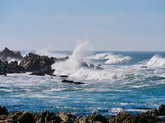 Crashing Blue Waves of the Ocean on Rocks on a Sunny Afternoon at The 17 Mile Drive on the Californian Coast. (Seymour Lu) Tags: pacific carmel windy dcgh5 coast coastal california jagged crashing fastmotion gh5 lumic panasonic fast sea aqua rocks drive 17mile mile 17 ocean blue wave waves water