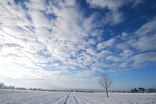 Die Erde ruht jetzt in dem Winterkleide